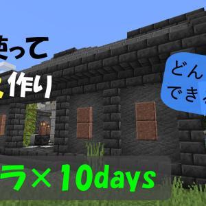 プチクラ×10days 神殿作りスタート!【岩を使って神殿作り!♯2】