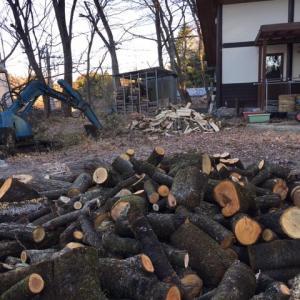 自宅庭で薪狩り