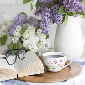 本好きを育てるためには親も面白い本を読もう!