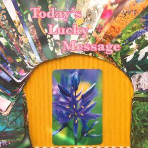 今日のラッキーメッセージ【陰陽】♡フラワーエッセンスカードリーディング♡