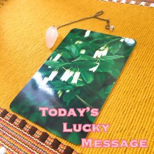 今日のラッキーメッセージ【わたしとは?を考える】♡フラワーエッセンスカードリーディング♡