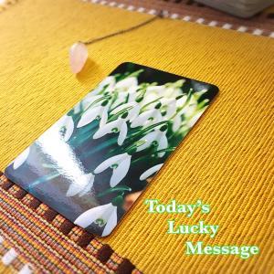 今日のラッキーメッセージ【新しい流れ】♡フラワーエッセンスカードリーディング♡