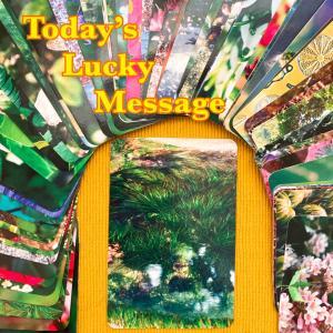 今日のラッキーメッセージ【真ん中】♡フラワーエッセンスカードリーディング♡