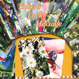 今日のラッキーメッセージ【時間】♡フラワーエッセンスカードリーディング♡
