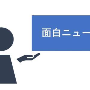 【便利グッズ】高床のガーデニングプランターは、成長速度2倍!