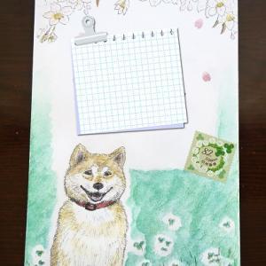 【絵封筒/Mail Art】柴犬と桜