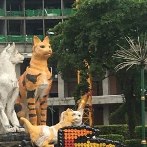 ASEAN旅行シリーズ7・クチン(マレーシア)