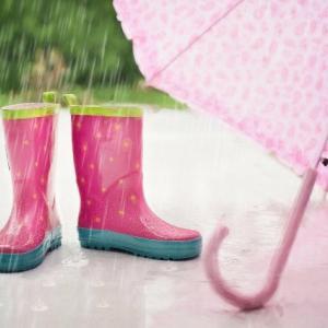 またしても大雨の予報