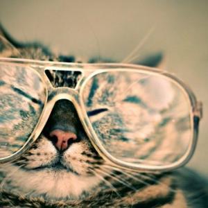 メガネを買う・買い物の楽しみ