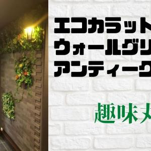 【DIY】ウォールグリーンと照明で怪しさ満点の玄関