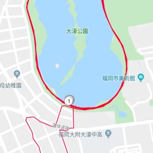 福岡マラソン後に12km走