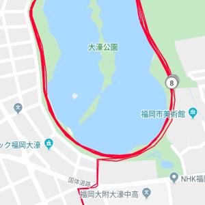 14kmペース走@ふくろうの会