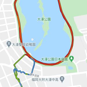 久しぶりの大濠公園8周走