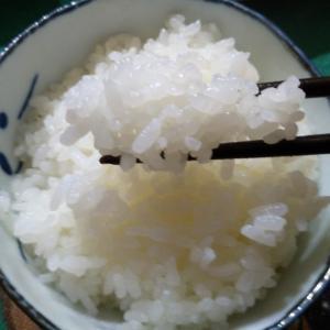 新潟産コシヒカリ10kgみずほの特選米は冷めても美味しかった!