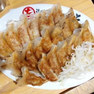 遠州男唄・濱松たんと浜松駅南1号店で餃子とホルモンを堪能