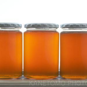 ハチミツを搾る(採蜜作業後編)