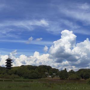 夏雲と備中国分寺五重塔