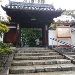 紅葉前の東福寺界隈その3 真面目に参拝を…光明院