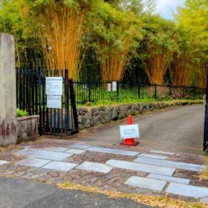 洛西竹林公園その1