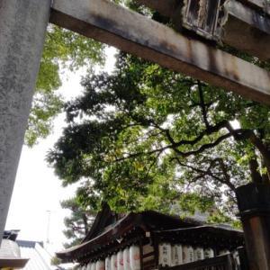 小さな神社で大きな満足…満足稲荷神社