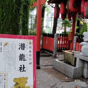 白峯神宮4…笑い竜と三葉乃松
