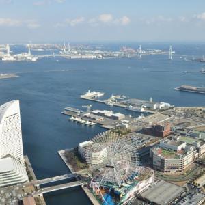 横浜のクルーズ船ダイヤモンド・プリンセス号に乗っていたオーストラリア人が下船の様子をおさめた動画【新型コロナウイルス肺炎】