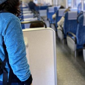 公共交通機関の利用 クルーズ船を下船した方々に公共交通機関の利用避け人と接触する際はマスクを着けるように要請【新型コロナウイルス肺炎】