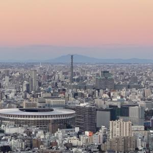 東京 初 区や市ごとの感染者数を発表 世田谷区 港区 杉並区【新型コロナウイルス感染症・COVID-19】