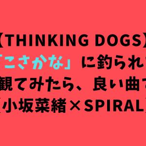 【Thinking dogs】「こさかな」に釣られてMVを観てみたら、良い曲でした【小坂菜緒×SPIRAL】