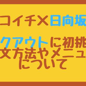 【ココイチ】テイクアウトに初挑戦!注文方法やメニューについて【日向坂46コラボ】