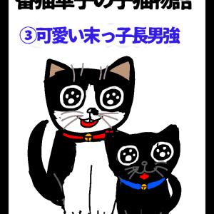 四コママンガ擬き絵日記「番猫華子物語番外編華子の子猫③