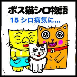 四コママンガ擬き「ボス猫シロ物語15」絵日記