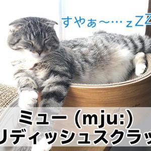 【ミュー (mju:) ガリガリディッシュスクラッチャー レビュー】高級感ある木目調がかっこいい猫の爪とぎ
