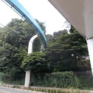 上野動物園の新しい電気バス撮影