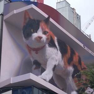 新宿駅東口の大きな猫&思い出横丁の七夕飾り