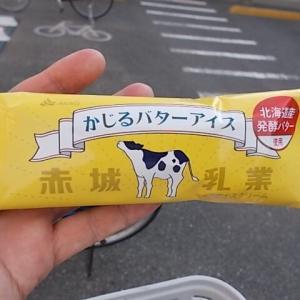 赤城乳業「かじるバターアイス」