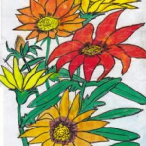 春の花 ~ガザニア~
