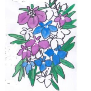 春の花 ~ロベリア~