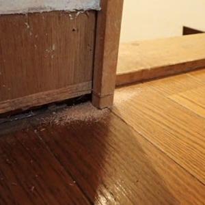 リビング床の張替え ③