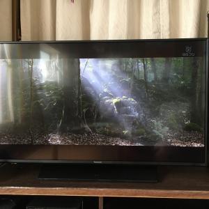 4Kテレビが我家にやって来た!ヤァヤァヤァ