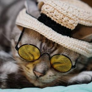 カンカン帽に色眼鏡