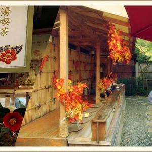 川越 檜香る足湯カフェでティータイム『足湯喫茶 椿や』