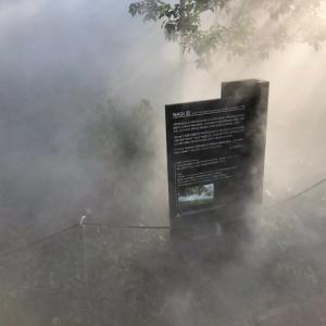 品川シーズンテラスの霧の彫刻・・・