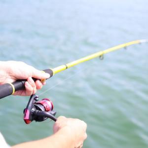 海釣り初心者におすすめする道具と魚の釣り方【予算・釣れる魚】