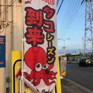 大阪南港・北港をはしご釣り【タコ釣りからのチヌ釣り】