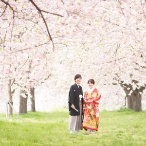 2020年春【春&桜deフォト】プラン