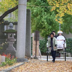 【お得な秋のウエディングプラン】結婚式・前撮り・結婚写真 <長野>