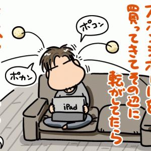 スポンジボールと親子間コミュニケーション
