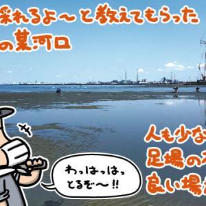 千葉内房でマテ貝採りをしてきました