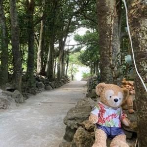 【2020年10月】沖縄旅行(5日目)-初めて「大石林山」「DINO恐竜PARK」に行ってみた!!‐